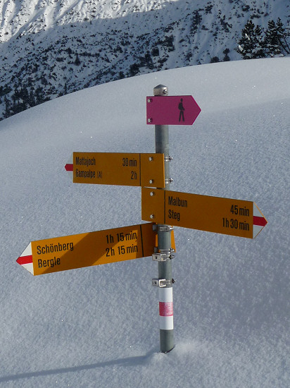 Signpost with the purple sign for the winter hiking trail at the tip, nearly coverd with snow
